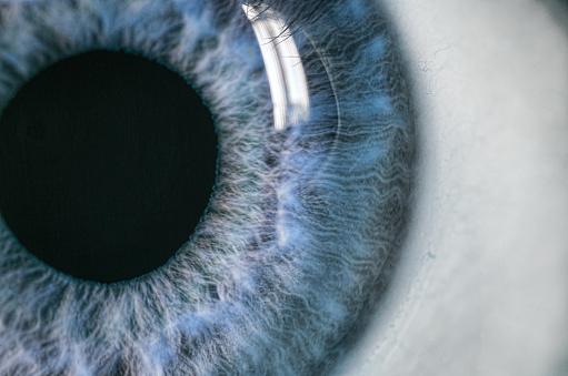 Migliori integratori per distacco vitreo